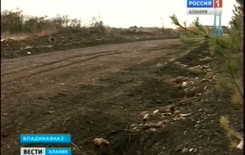 Садоводы товарищества «Спутник» отказываются отдавать свои земельные участки под городскую застройку