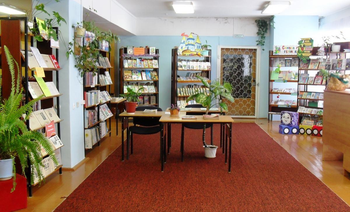 Ликвидировать сельские библиотеки можно будет только с разрешения жителей