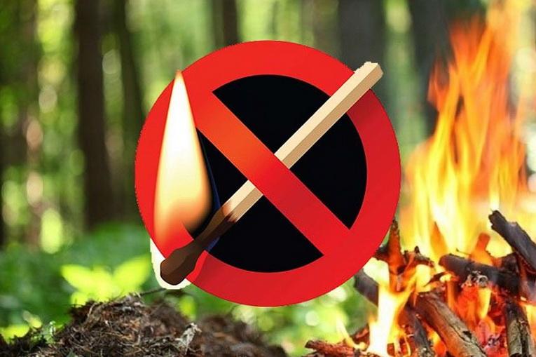 В связи с аномальной жарой в Моздокском районе введен особый противопожарный режим