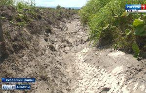 Предварительный ущерб от засухи в республике оценивают в миллиард рублей