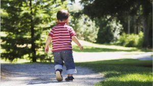 В Ардонском районе нашли потерявшегося в лесу ребенка