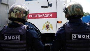 В Северной Осетии взрывотехники уничтожили гранату, найденную вблизи п. Южный