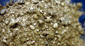 В Северной Осетии нашли золотую жилу