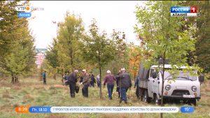 В субботу в Моздокском и Пригородном лесничествах стартует акция «Сохраним лес»