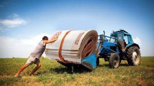 186 млн рублей направят на поддержку агростартапов в Северной Осетии