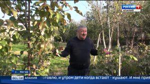 Северный Кавказ признан самым трезвым регионом России согласно рейтингу Росстата