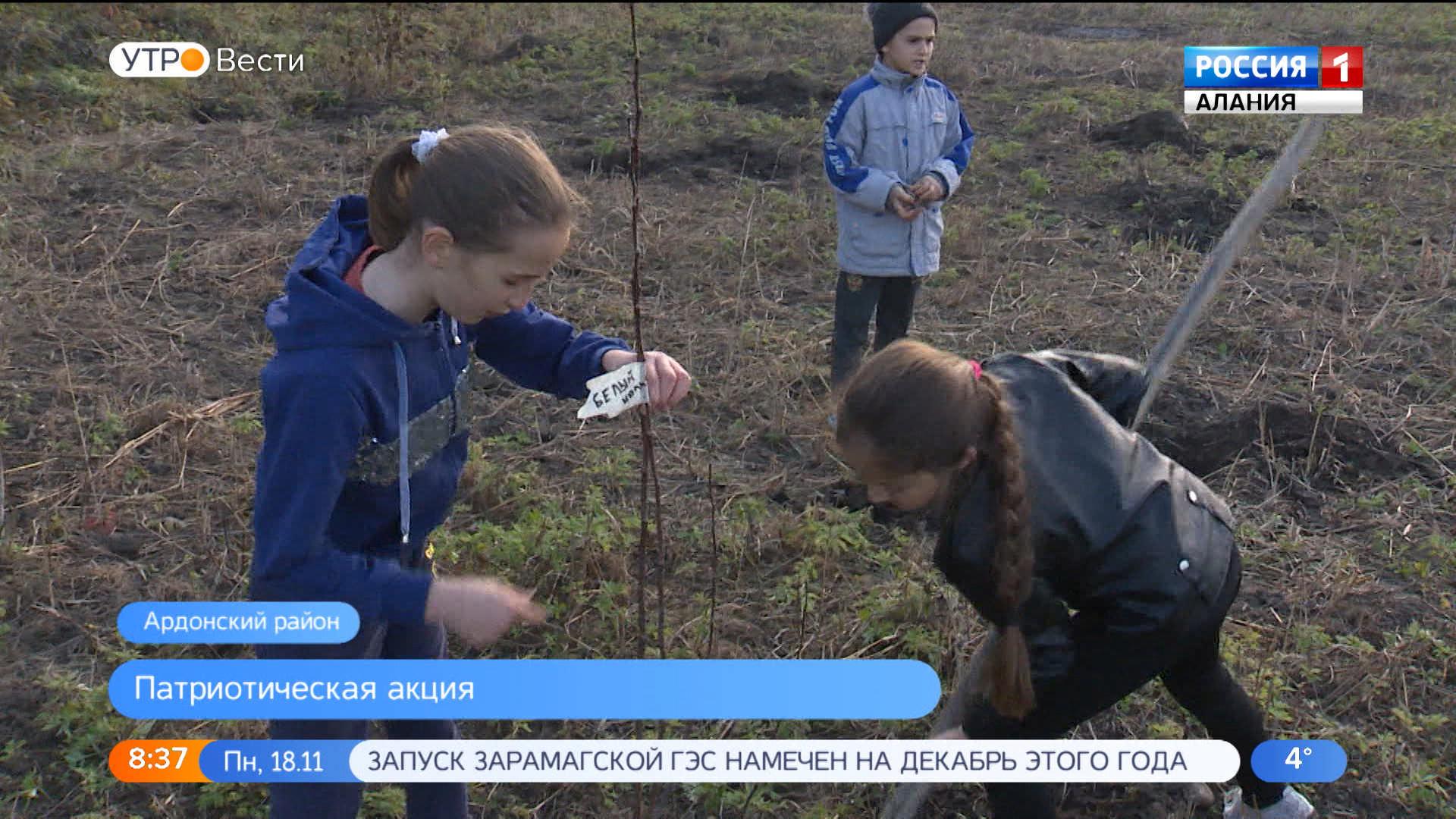 Учащиеся школы с. Нарт присоединились ко всероссийской акции «Сад  Победы»