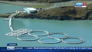 В Северной Осетии активно развивается рыбоводство
