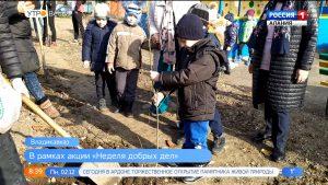 В одном из детсадов Владикавказа в рамках «Недели добрых дел» высадили дубы и клены