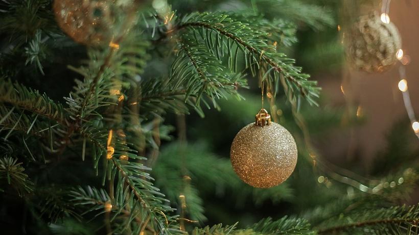 Главную новогоднюю елку республики в этом году установят на пл. Ленина