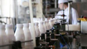 В 2020 году в Северной Осетии построят первый завод по переработке молока в горах