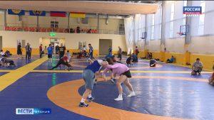 Борцы из нескольких стран проводят сборы во Владикавказе