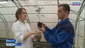 В Эльхотовском многопрофильном колледже открылся класс обучения будущих растениеводов