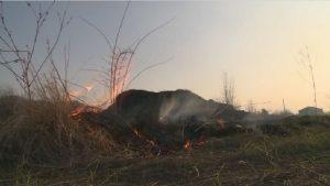 За сутки в Северной Осетии зарегистрировали более 15 возгораний сухой травы