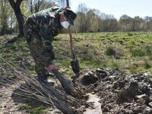 В Северной Осетии продолжается акция «Сад памяти»