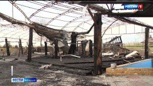 Владельцы сгоревшего ресторана «Фермер» планируют восстановить место отдыха