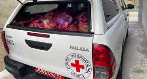 Красный Крест доставил жителям сел Южной Осетии гумпомощь на полгода