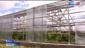В Правобережном районе от стихии пострадало более трех тысяч гектаров сельхозугодий