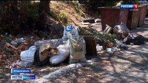 Жильцы многоквартирных домов Владикавказа жалуются на санитарное состояние дворов