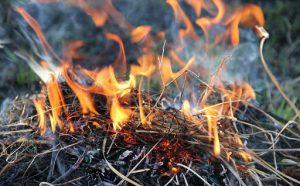 В Моздокском районе введен особый противопожарный режим