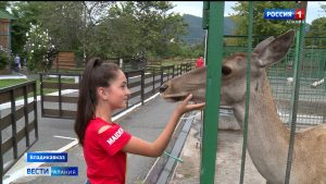 Во Владикавказе после снятия ограничений открывается все больше зон отдыха