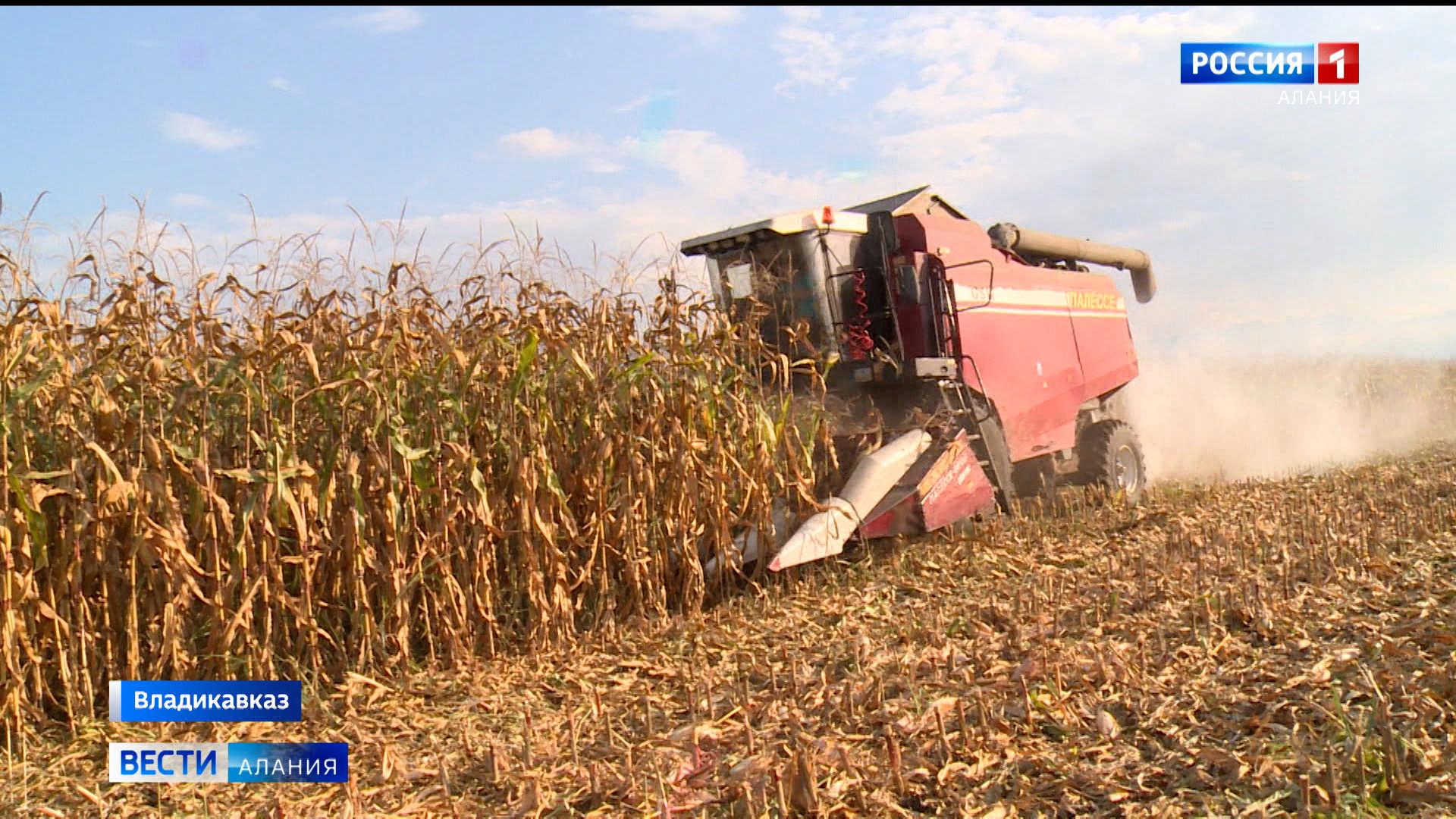 В Северной Осетии обсудили вопрос агрострахования