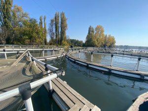 По факту незаконного использования озера Бекан возбуждено дело об административном правонарушении