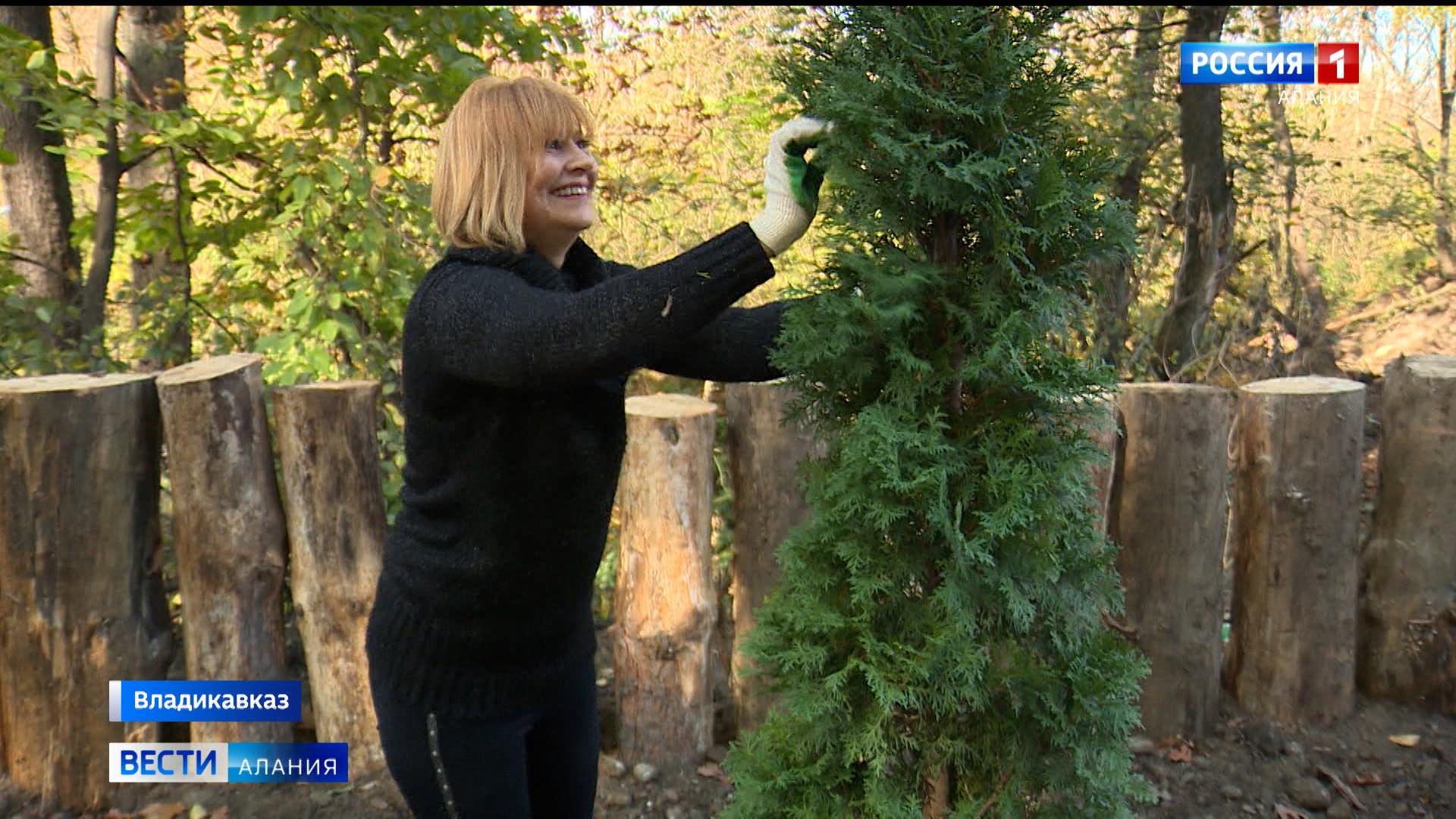 Жители Владикавказа присоединились к акции «Посади именное дерево»