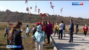 «Молодежка ОНФ» заложила дубовую аллею в память о жертвах Кармадонской трагедии