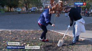 «Единая Россия» благоустроила прогулочную зону в Северо-Западном районе Владикавказа