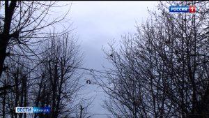Сильный ветер принесет в Северную Осетию дождь и мокрый снег