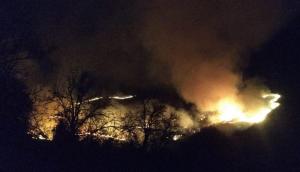 В Северо-Осетинском заповеднике горят 5 гектаров сухостоя