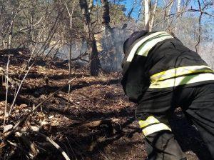 Пожар в Северо-Осетинском заповеднике удалось локализовать