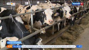 СПК «Калух» в Ирафском районе планирует расширяться