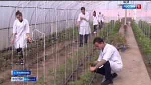 В Эльхотовском многопрофильном колледже второй год успешно готовят будущих агрономов