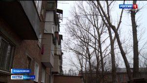 Жильцы одного из домов Владикавказа в течение нескольких лет просят спилить старые деревья, растущие вплотную к зданию