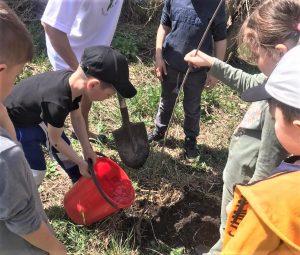 В Беслане высадили березовую аллею в память о Герое Советского Союза Дмитрии Сигове